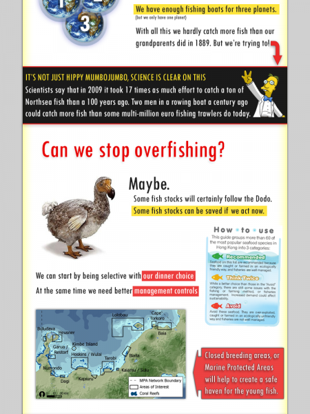 Overfishing: One Minute Crash Course  Infographic