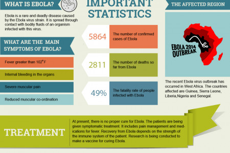 Overview of Ebola outbreak in Africa Infographic