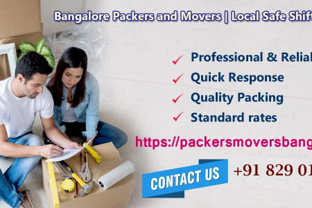 Pack Your Antique Securely During Relocation With Safe And Professional Packers And Movers Bangalore Infographic