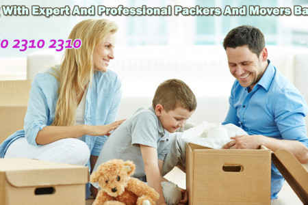 Packers And Movers Organizations Bangalore For Safe Auto Transportation Infographic