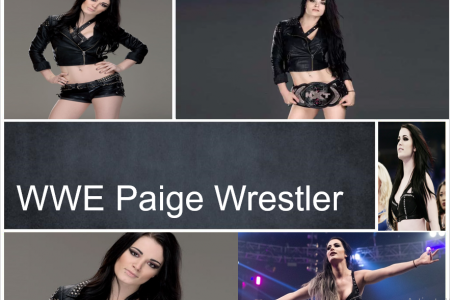 Paige Wrestler Infographic