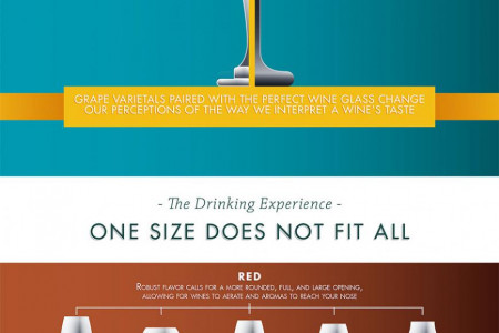 Pairing Grape To Glass Infographic