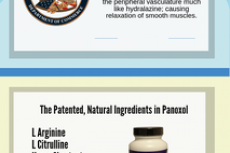 Patented to Support Vascular Health - Panoxol Infographic