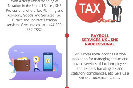 Payroll Services USA - SNS Professional Infographic