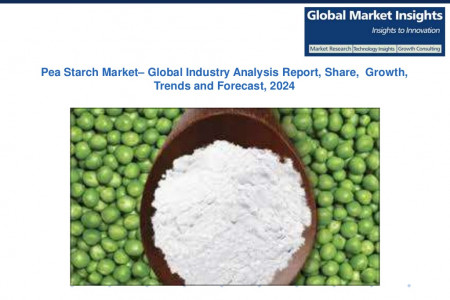 Pea Starch Market Research Reports & Industry Analysis, 2017 – 2024 Infographic