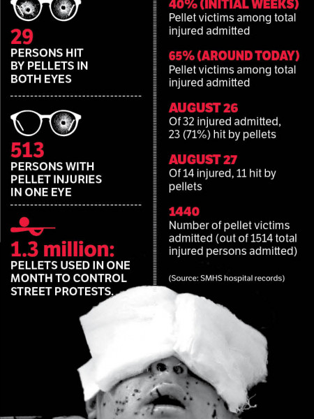 Pellet victims  Infographic
