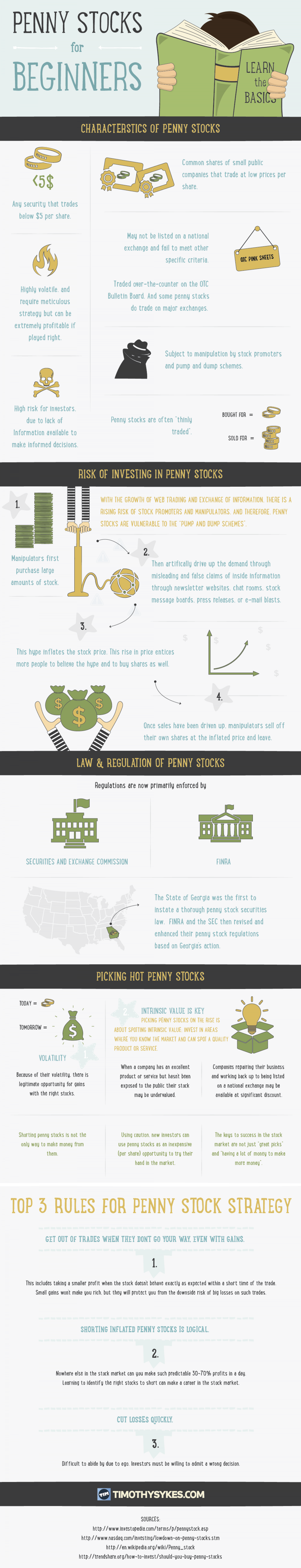 Penny Stocks for Beginners Infographic