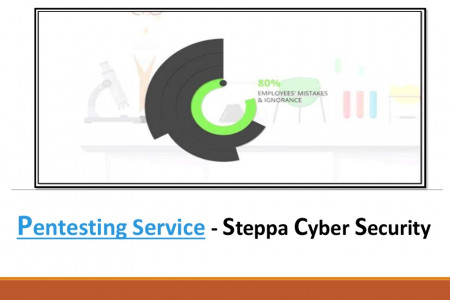 Pentesting Service - Steppa Cyber Security Infographic