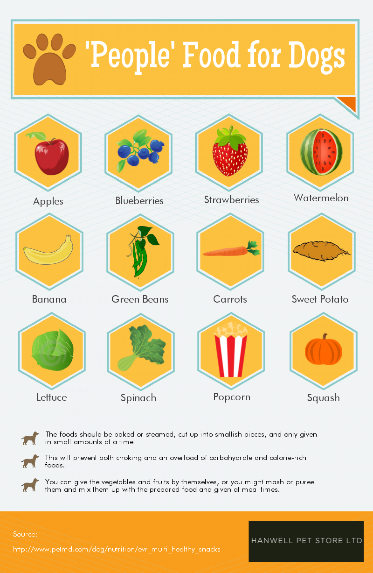 People Food for Dogs Infographic