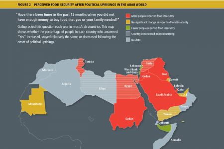 Perceived Food Security After Political Uprisings in the Arab World Infographic