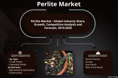 Perlite Market Size, Share, Growth, Research and Forecast 2019-2025 Infographic