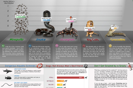 Personal Injury in the Wild Infographic