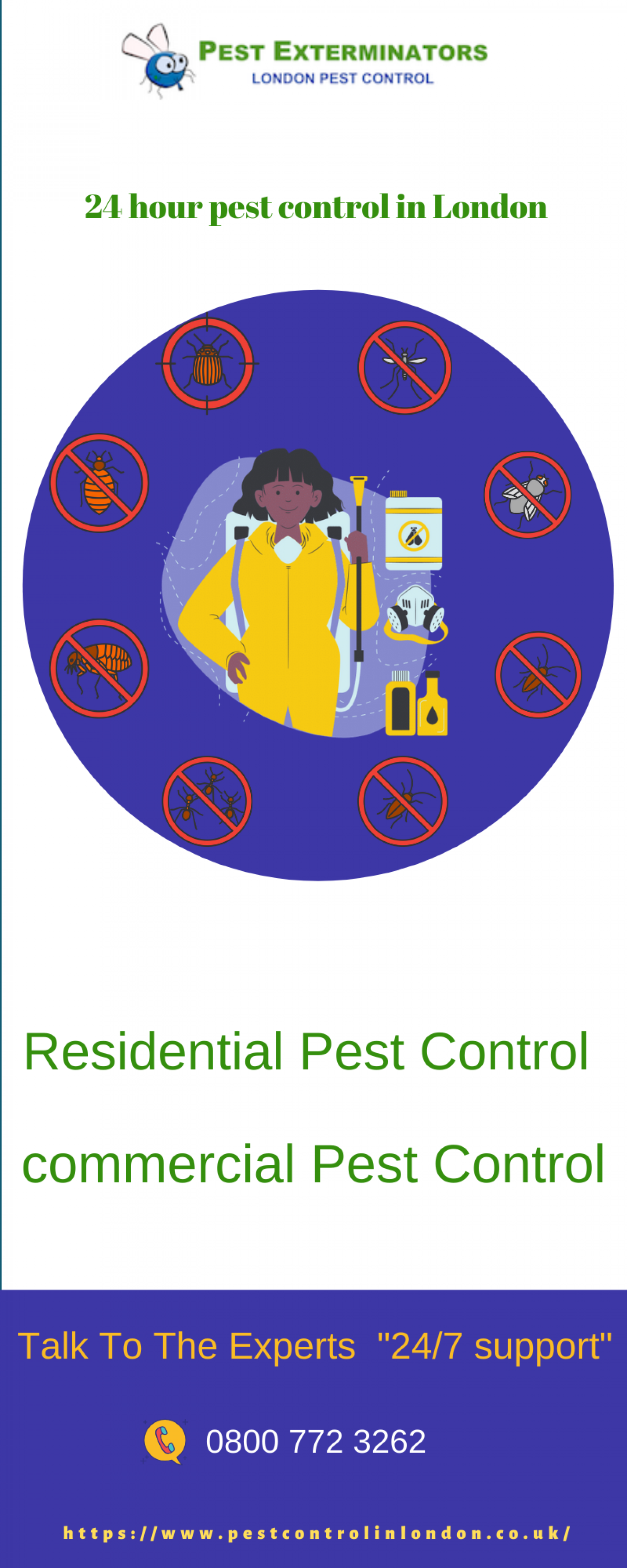 Pest control services in London  Infographic