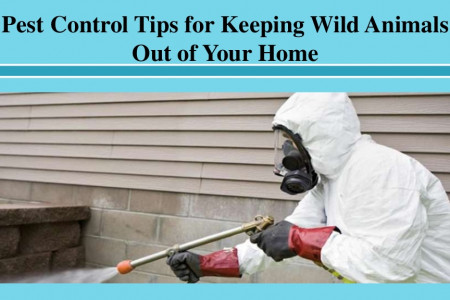 Pest Control Tips for Keeping Wild Animals Out of Your Home Infographic