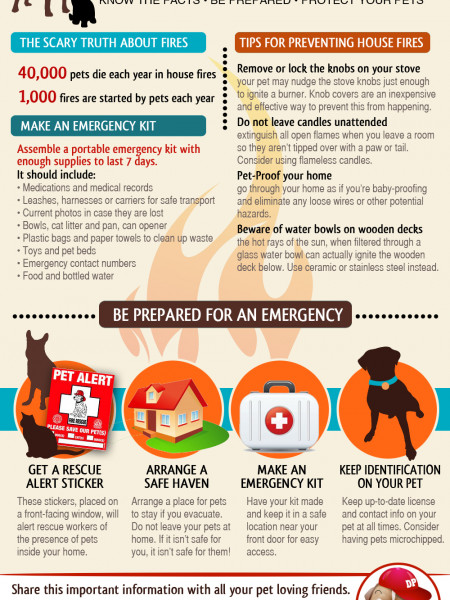 Pet Fire Safety Infographic