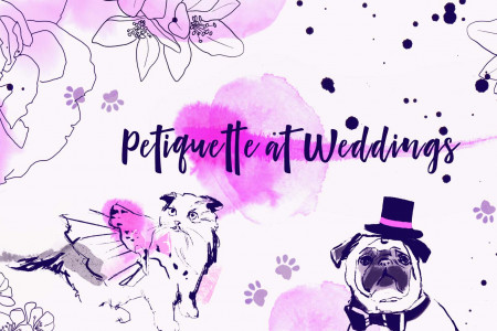 Pet Friendly Weddings Infographic