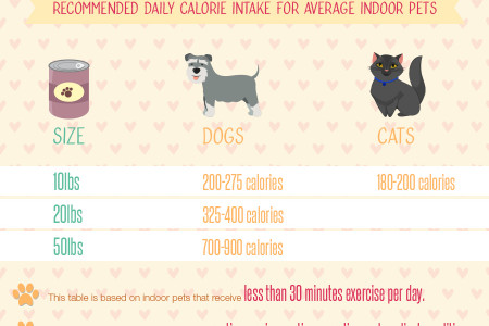 Pet Obesity- Fighting the Fat Infographic