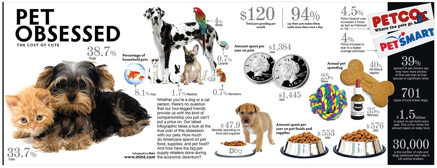 Pet Obsessed: The Cost of Cute Infographic