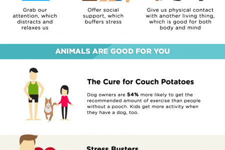 Pets and Happiness Infographic
