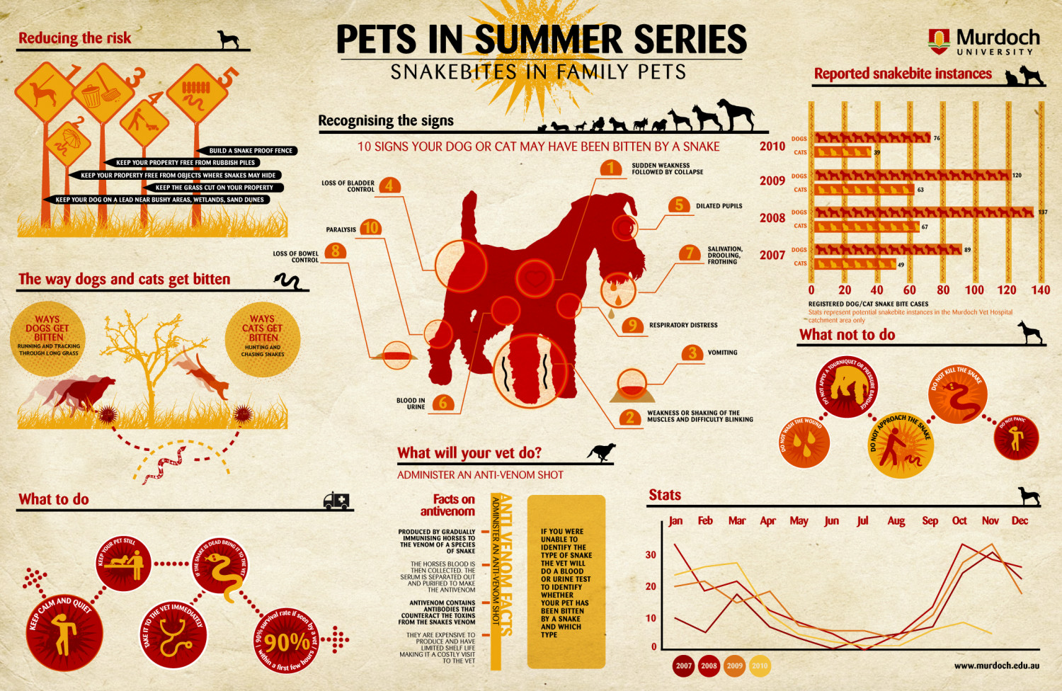 Pets In Summer Series - Snakebites In Family Pets Infographic