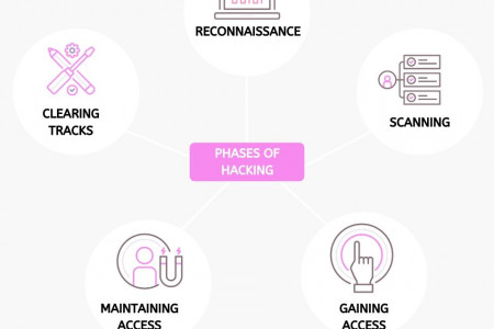 Phases of Hacking Infographic