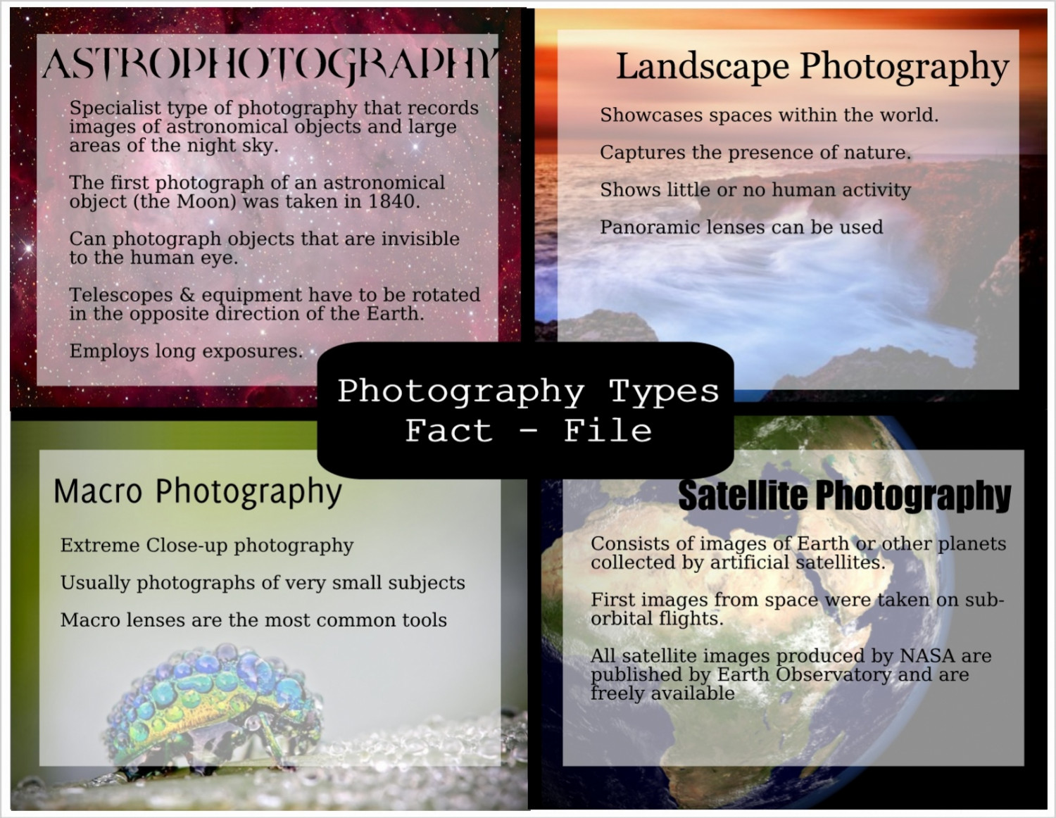 Photography Types Infographic