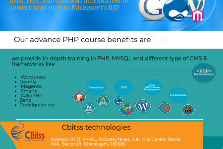 PHP training in Chandigarh  Infographic