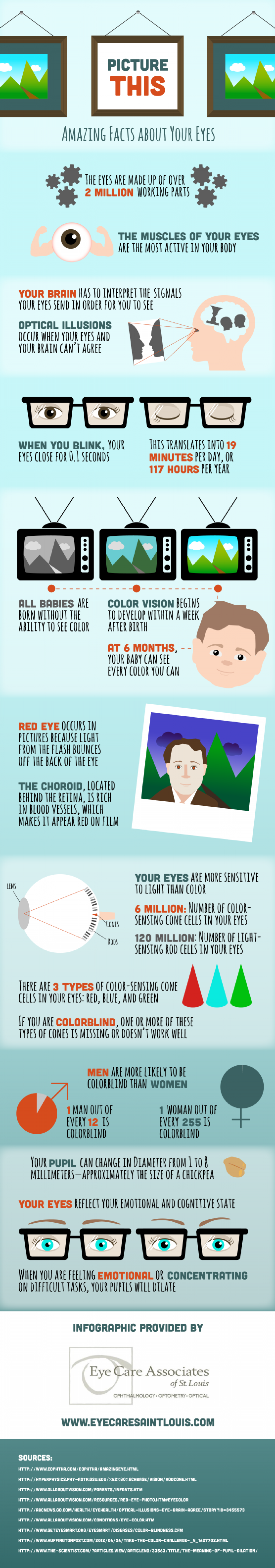 Picture This: Amazing Facts about Your Eyes Infographic