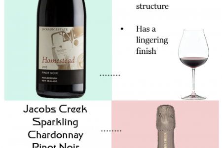 Pinot Noir Wines to Taste Infographic