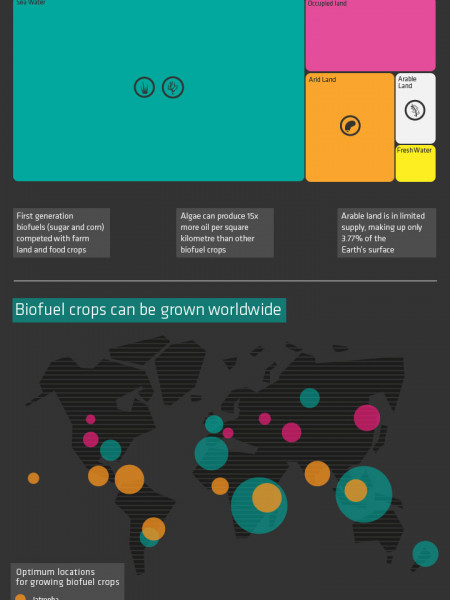 Plant Powered Planes Infographic