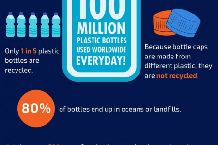 Plastic Bottle Consumption and Recycling Infographic