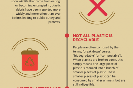 Plastic Is Harmful For The Environment! Infographic