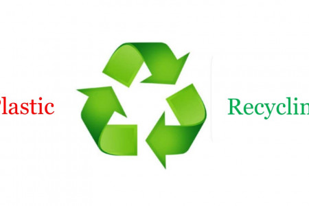Plastic Recycling Companies in UAE Infographic