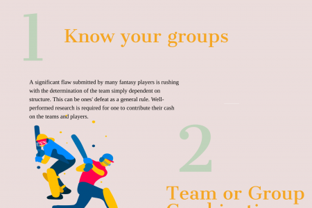 Play Fantasy Cricket And Win Prizes Infographic