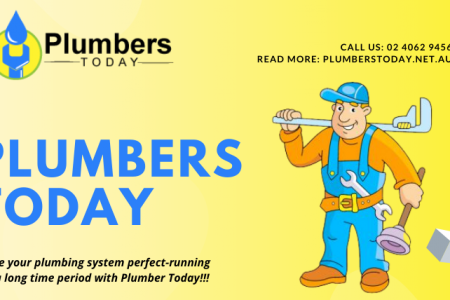 Plumbers Today Infographic
