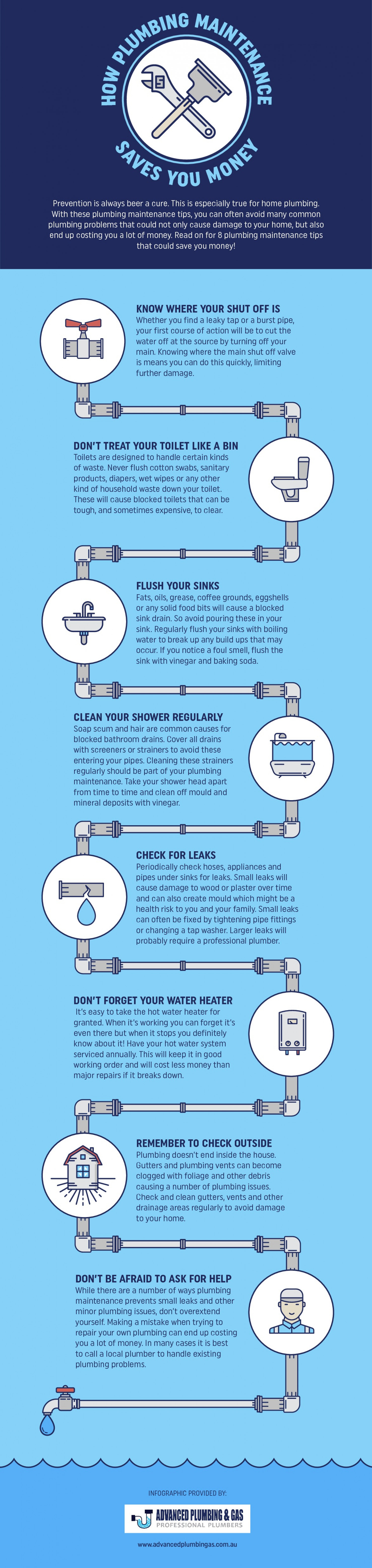 Plumbing Maintenance Tips Infographic Infographic