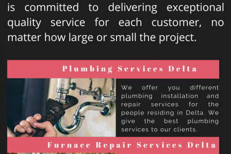 Plumbing Services Delta Infographic