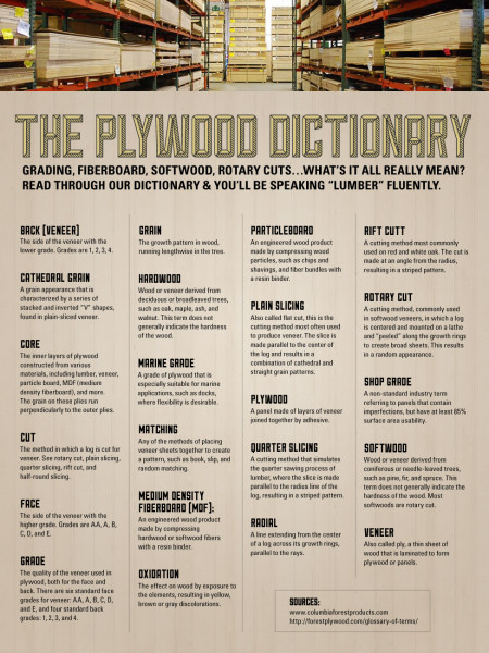 Plywood Dictionary Infographic