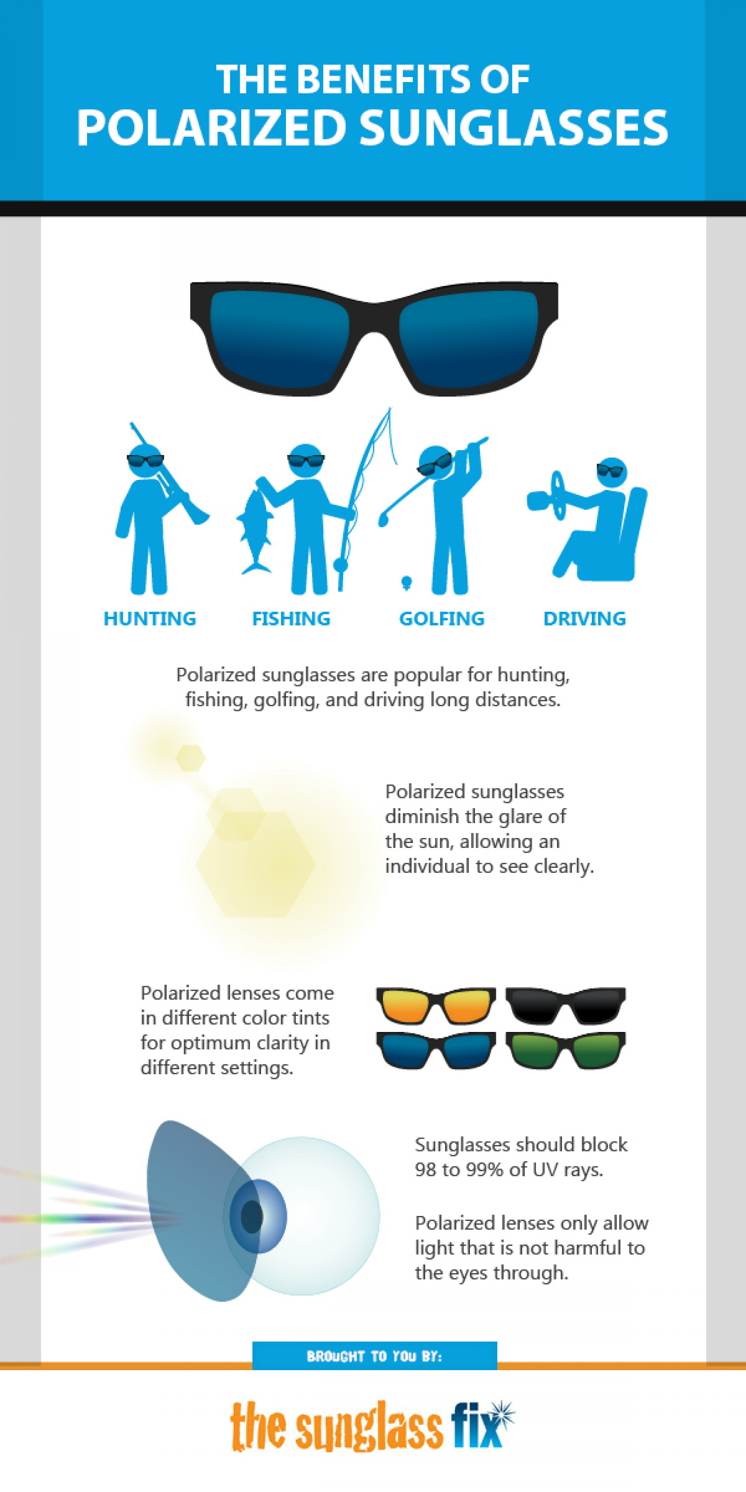 The Benefits of Polarized Sunglasses Infographic