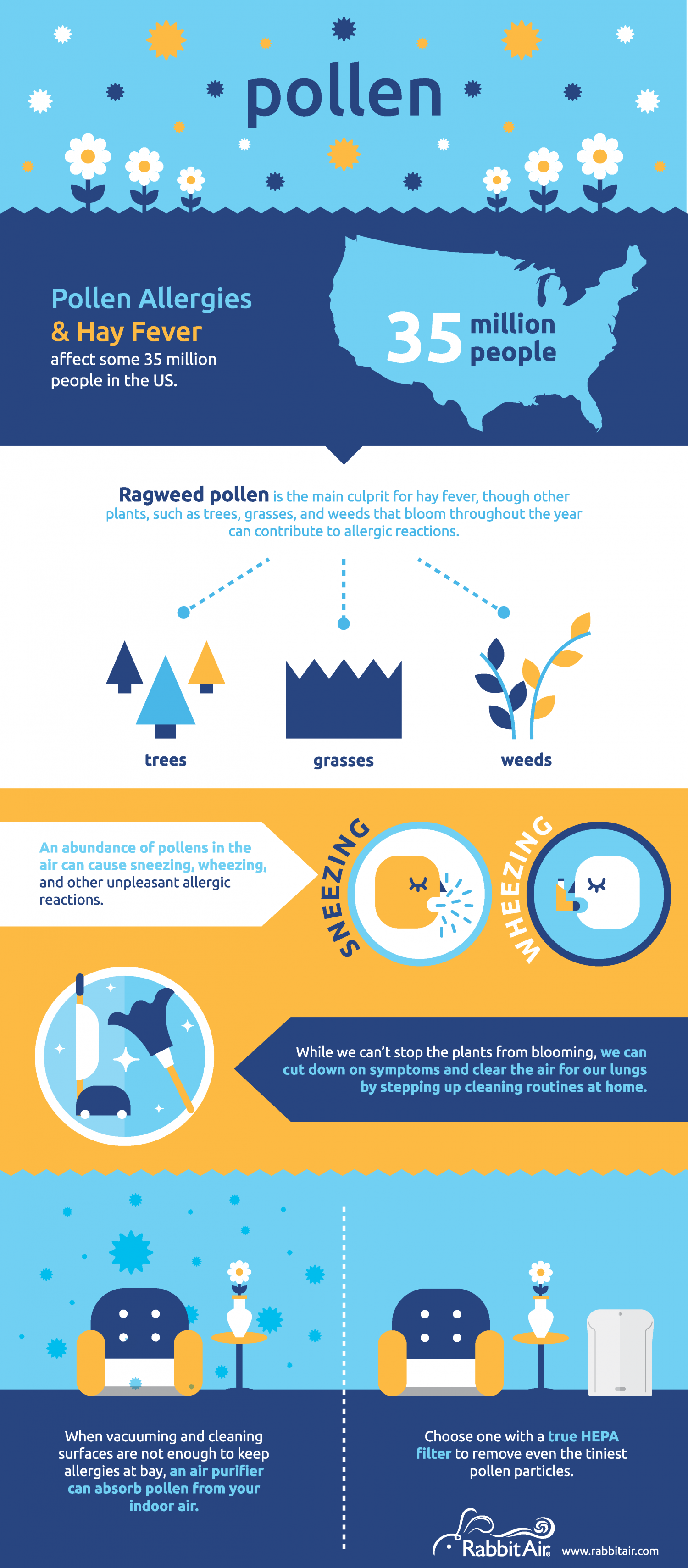 Pollen Infographic Infographic