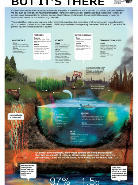 Polluted Soil Infographic