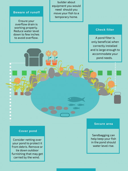 Pond Care Tips Before and After Storms Infographic