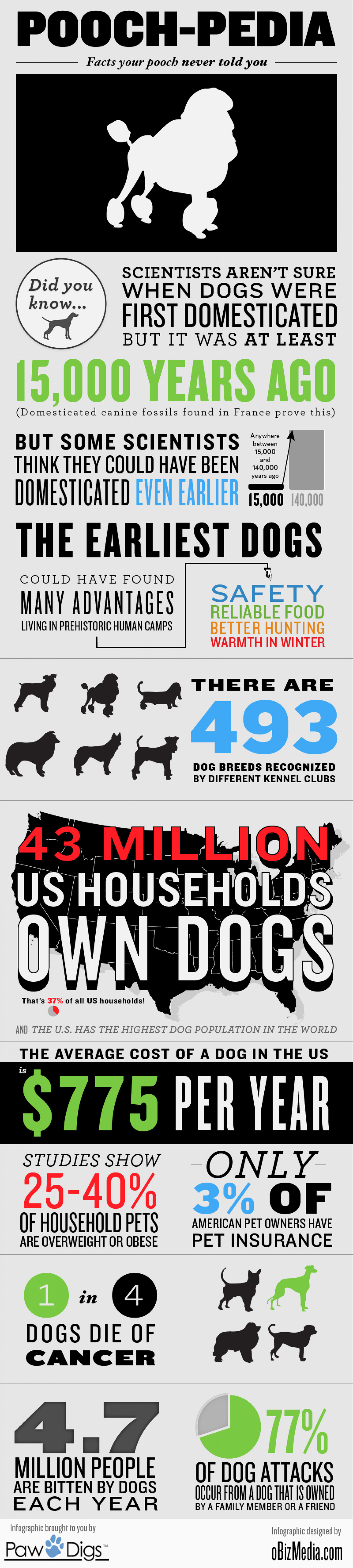 Pooch-pedia: Facts Your Pooch Never Told You Infographic