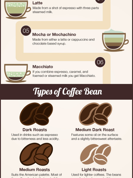 Popular Types Of Coffee and Beans Infographic