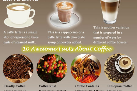 Popular Types of Coffee Infographic
