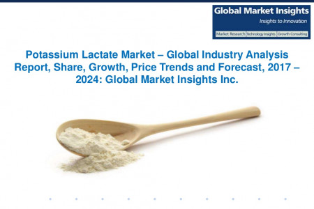 Potassium Lactate Market Share, Segmentation, Report 2024 Infographic