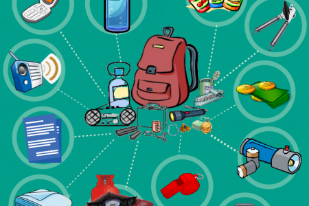 Power Outage Survival Kit Infographic