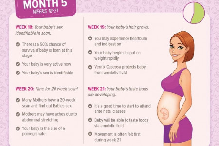 Pregnancy Journey- A week By Week Growth of Your Little One! Infographic