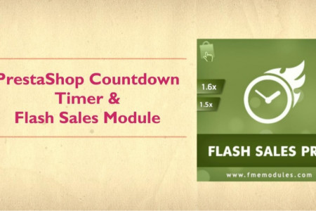 Premium Flash Sales Module Infographic
