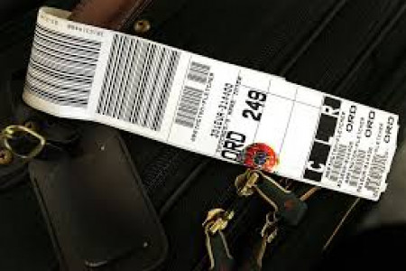 Printed Airline Luggage Tag Infographic